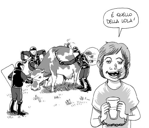 Quello della Lola