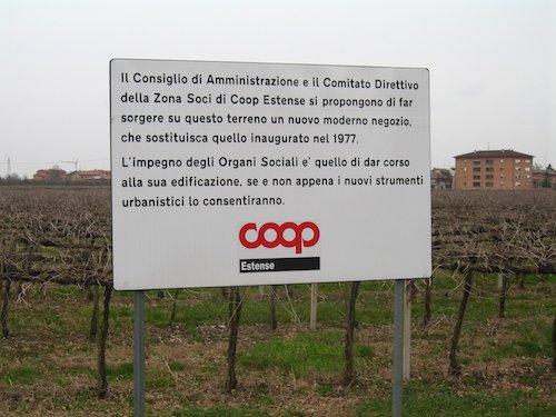 Un vigneto alle porte di Campogalliano