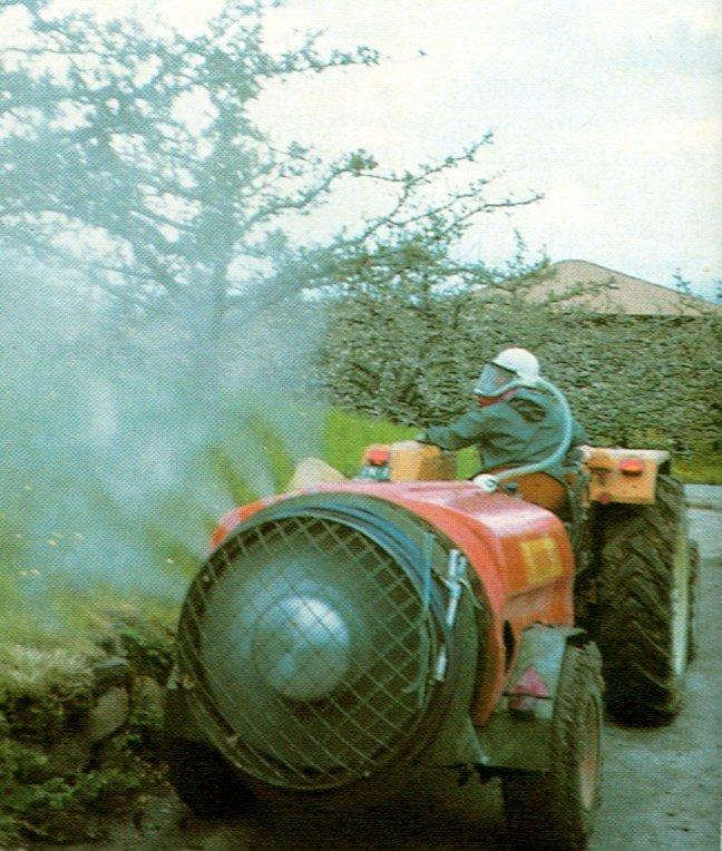 I pesticidi di Melinda