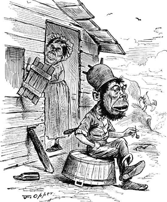 Vignetta anti-irlandese, 1882